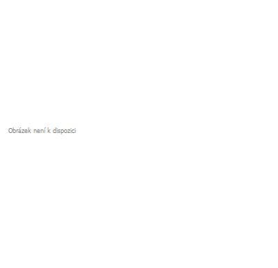 BGS Otočné kolečko | červené/černé | 100 mm